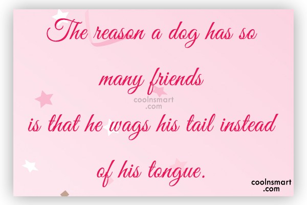 Dogs Quote: The reason a dog has so many...
