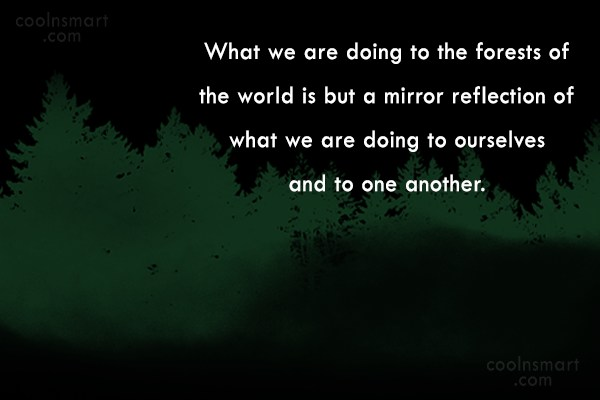 Quote: What we are doing to the forests...