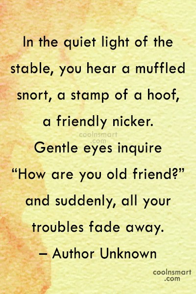 Horse Quote: In the quiet light of the stable,...