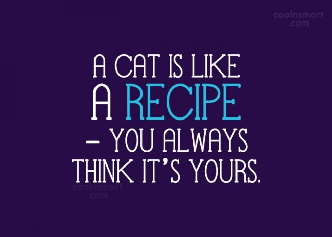 Cats Quote: A cat is like a recipe –...
