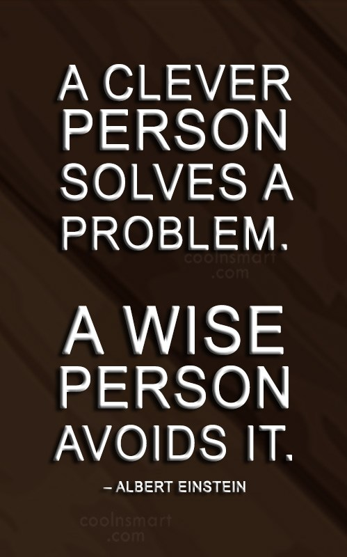 Problem Quote: A clever person solves a problem. A...