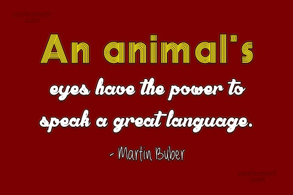 Pets Quote: An animal's eyes have the power to...