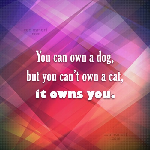 Cats Quote: You can own a dog, but you...