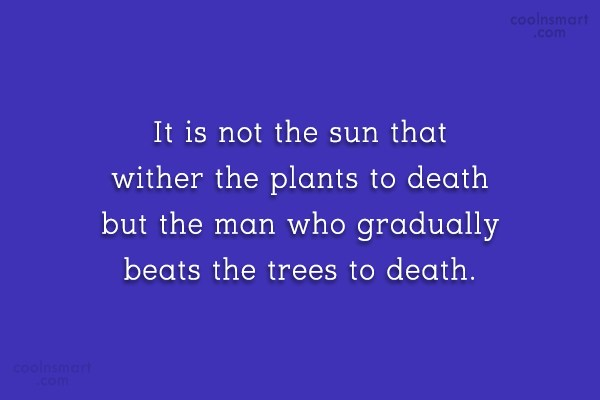 Environment Quote: It is not the sun that wither...