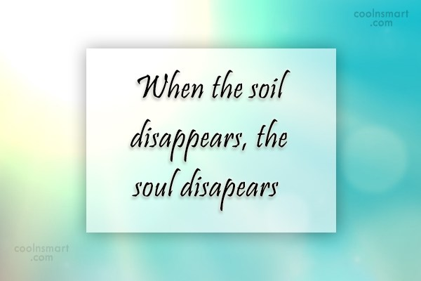 Environment Quote: When the soil disappears, the soul disapears