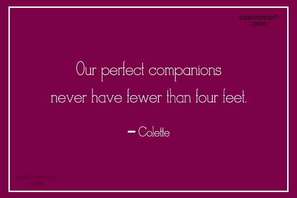 Competition Quote: Our perfect companions never have fewer than...