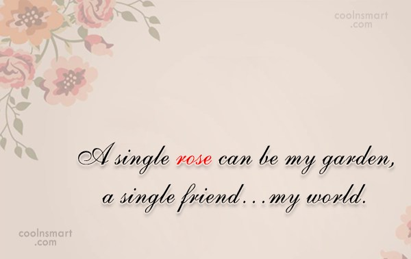Best Friend Quote: A single rose can be my garden,...