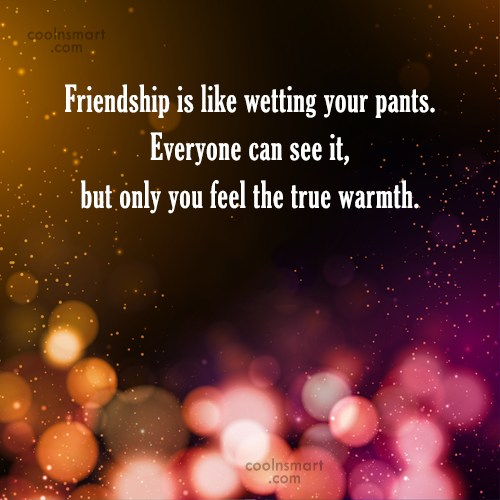 Friendship Quote: Friendship is like wetting your pants. Everyone...