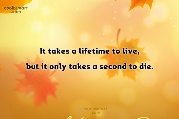 Sad Quote: It takes a lifetime to live, but...