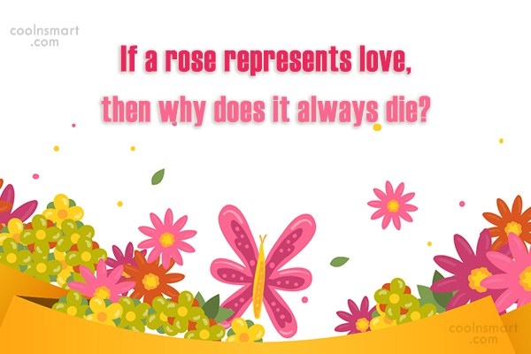Love Quote: If a rose represents love, then why...