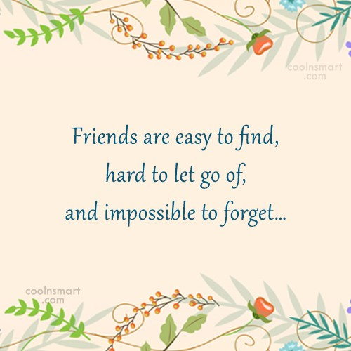 Friendship Quote: Friends are easy to find, hard to...
