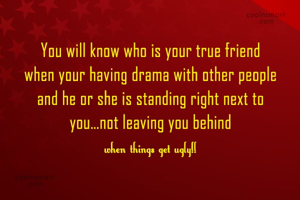 Friendship Quote: You will know who is your true...
