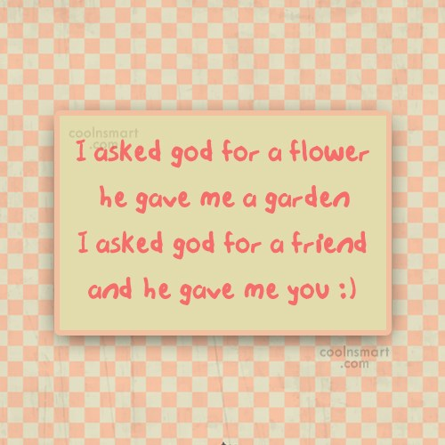 Friendship Quote: I asked god for a flower he...