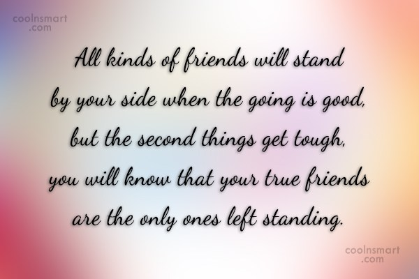 Friendship Quote: All kinds of friends will stand by...