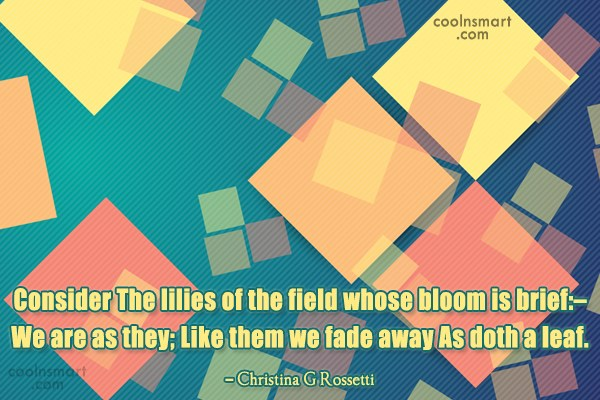 Quote: Consider The lilies of the field whose...