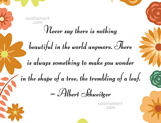 Beauty Quote: Never say there is nothing beautiful in...