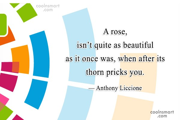 Beauty Quote: A rose, isn't quite as beautiful as...