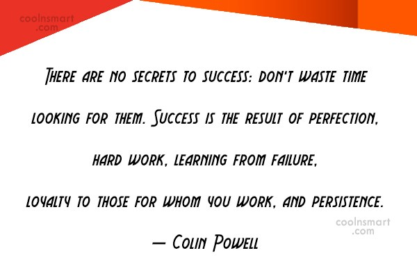 Success Quote: There are no secrets to success: don't...