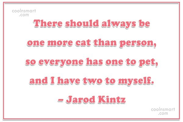 Quote: There should always be one more cat...