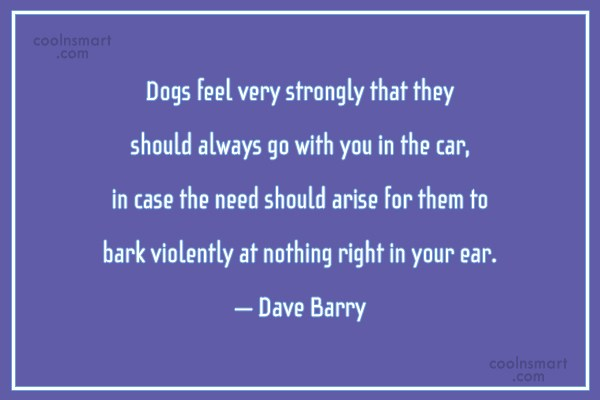 Pets Quote: Dogs feel very strongly that they should...