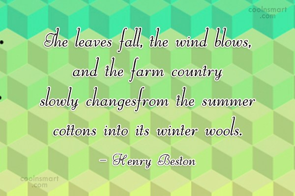 Autumn Quote: The leaves fall, the wind blows, and...