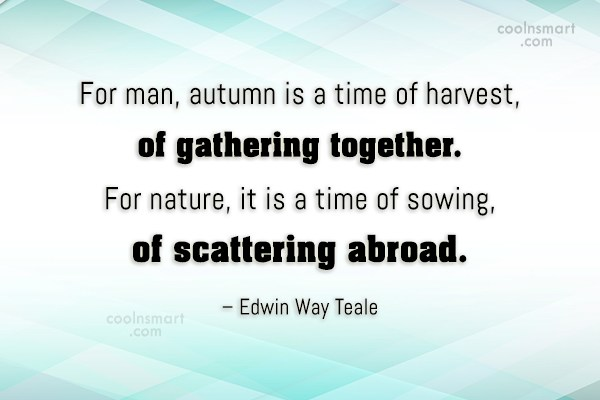 Autumn Quote: For man, autumn is a time of...