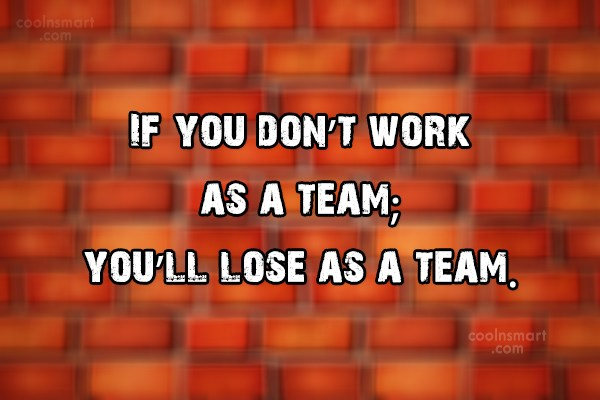 Teamwork Quote: If you don't work as a team;...