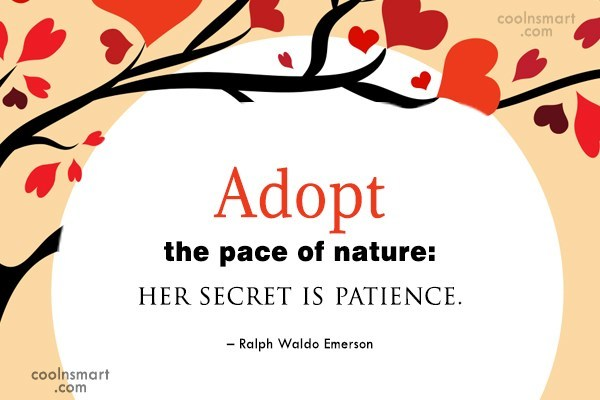 Nature Quote: Adopt the pace of nature: her secret...