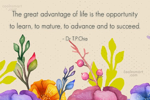 Opportunity Quote: The great advantage of life is the...