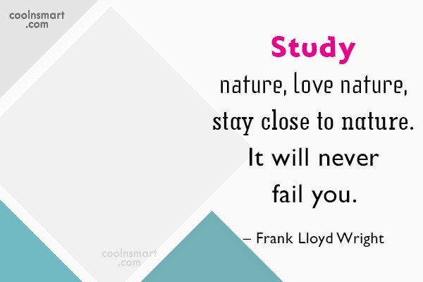 Nature Quote: Study nature, love nature, stay close to...