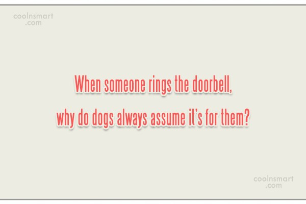 Dogs Quote: When someone rings the doorbell, why do...