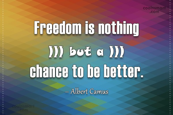 Freedom Quote: Freedom is nothing but a chance to...