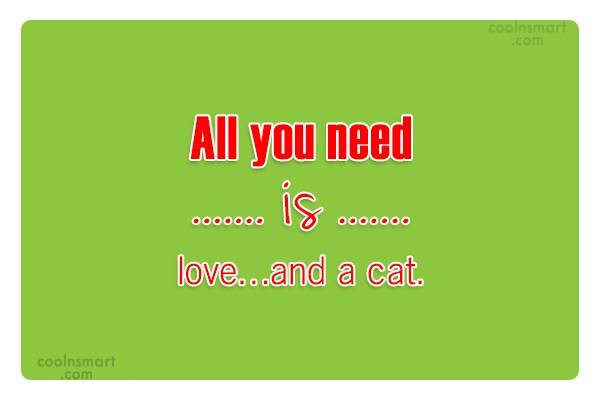 Cats Quote: All you need is love…and a cat.