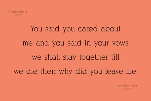 Divorce Quote: You said you cared about me and...