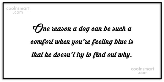 Dogs Quote: One reason a dog can be such...