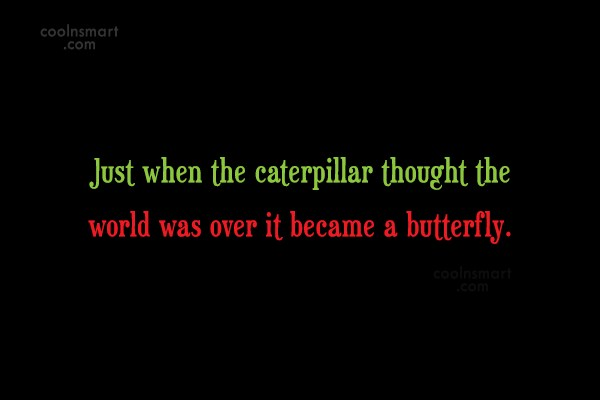Holding On Quote: Just when the caterpillar thought the world...