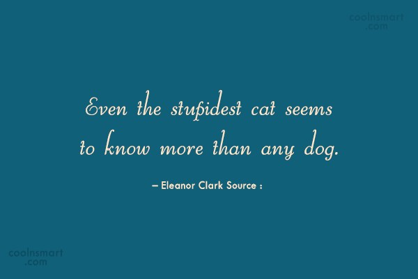 Cats Quote: Even the stupidest cat seems to know...