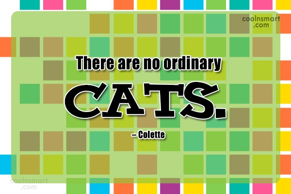 Quote: There are no ordinary cats. – Colette