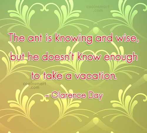 Quote: The ant is knowing and wise, but...