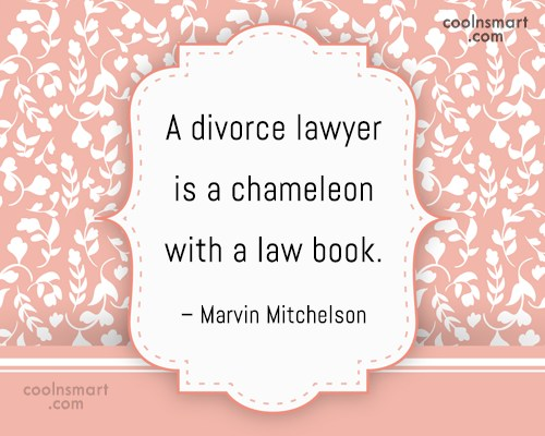 Divorce Quote: A divorce lawyer is a chameleon with...