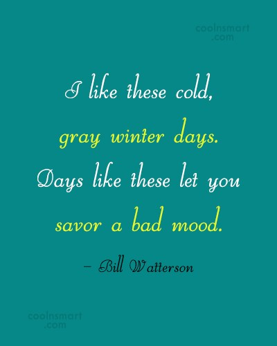 Winter Quote: I like these cold, gray winter days....