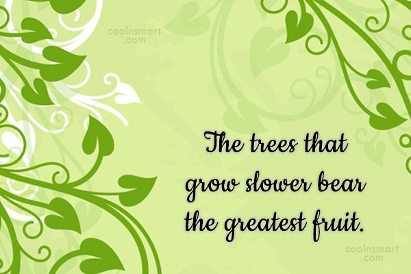 Patience Quote: The trees that grow slower bear the...