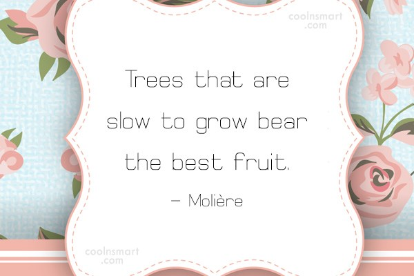 Patience Quote: Trees that are slow to grow bear...