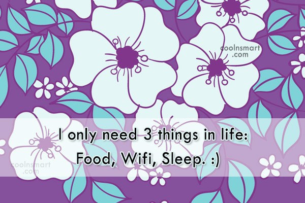 Internet Quote: I only need 3 things in life:...