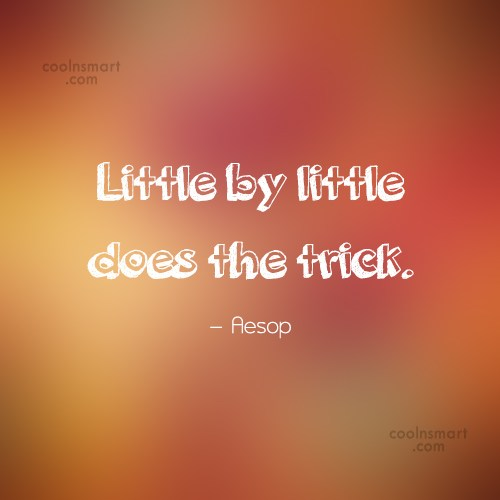 Quote: Little by little does the trick. –...