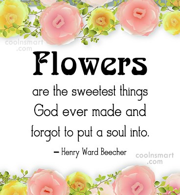 Soul Quote: Flowers are the sweetest things God ever...