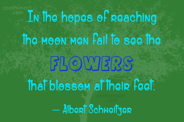 Quote: In the hopes of reaching the moon...