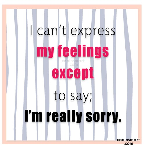 Sorry Quote: I can't express my feelings except to...