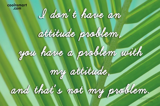 Attitude Quote: I don't have an attitude problem, you...