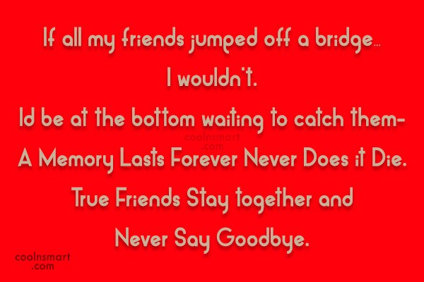 Friendship Quote: If all my friends decided to jump...